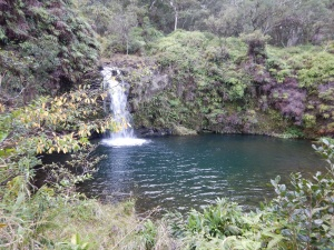 Not as big or as pretty as many of the waterfalls on the road to Hana